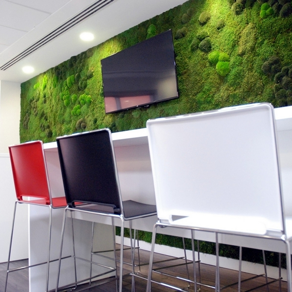 Ludlow Trust - Office Fitout Project